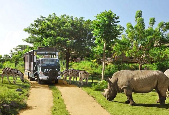 Bali Safari and Marine Park, Bali