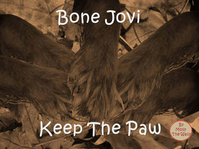 Keep The Faith Bon Jovi album cover by Molly The Wally!
