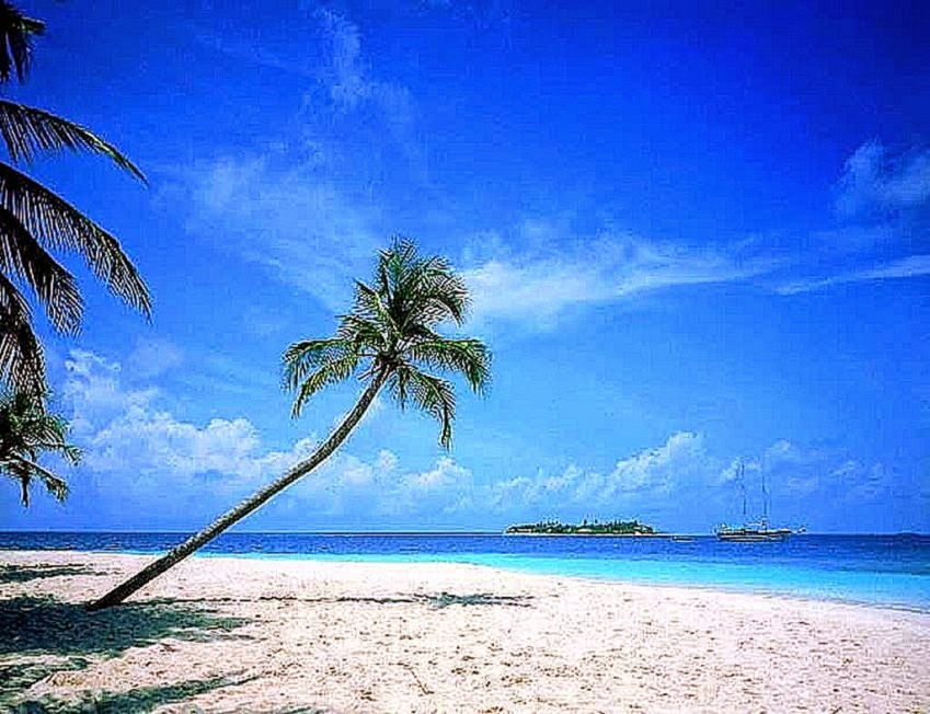 Free Beach Scenes For Desktop Choice Image - Wallpaper And Free Download