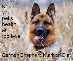 German Shepherd Nutrition Diet