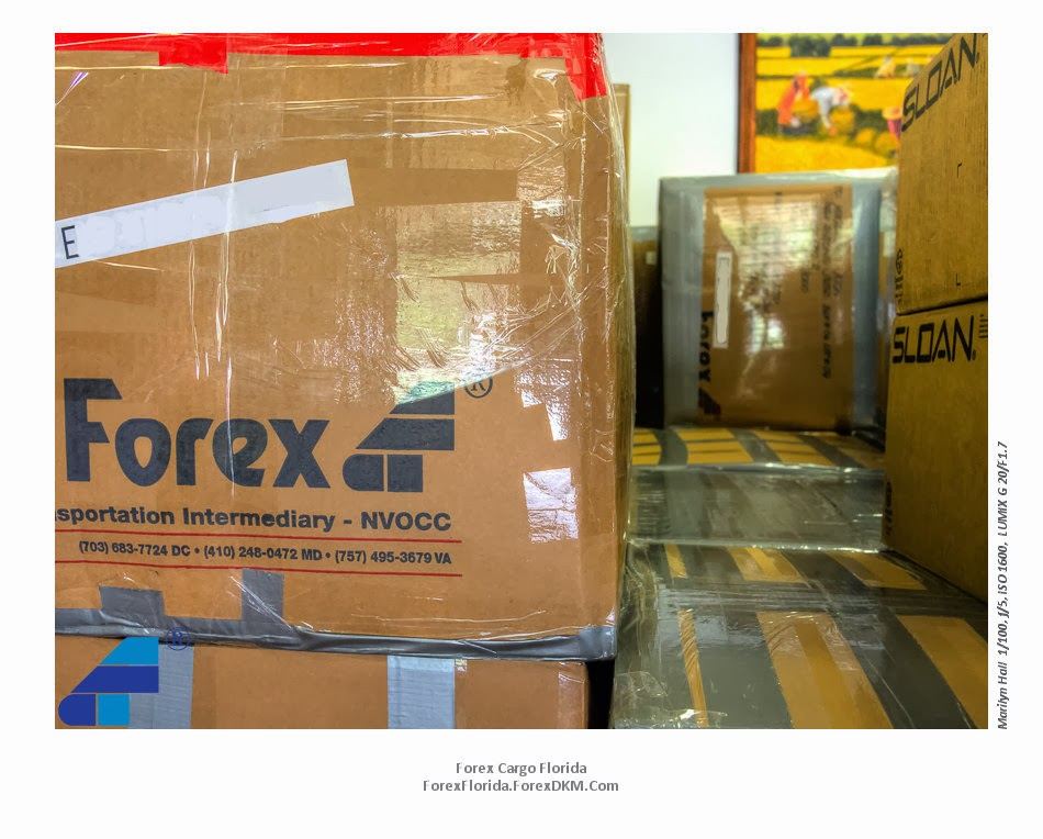 Forex umac express cargo nz ltd