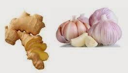 8 Makanan dengan Efek yang Kuat dalam Pengobatan Infeksi