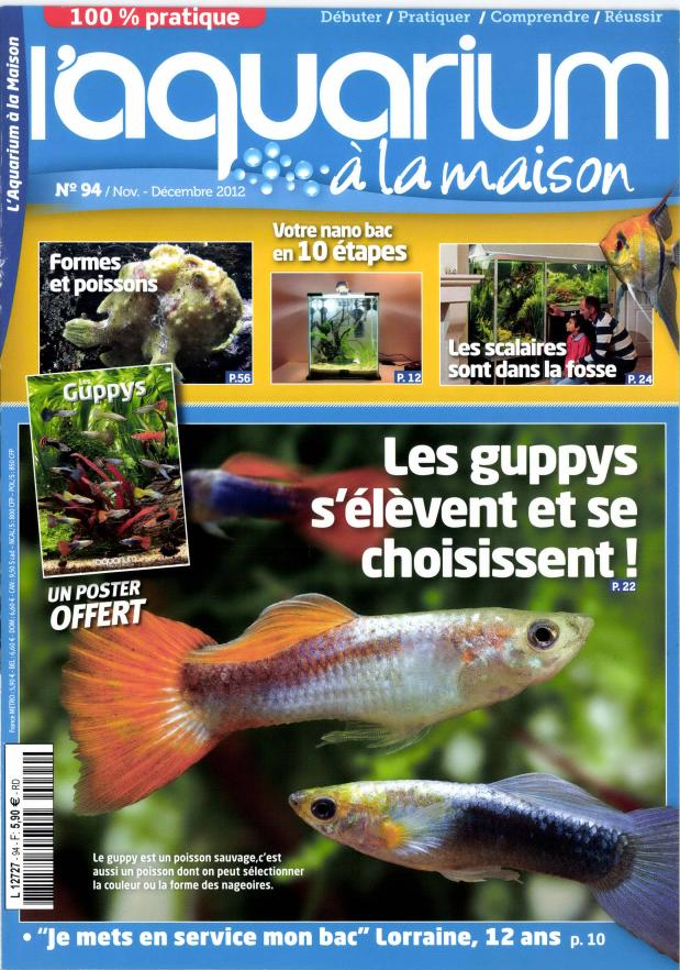 Rikarium l 39 aquarium la maison magazine for A la maison translation