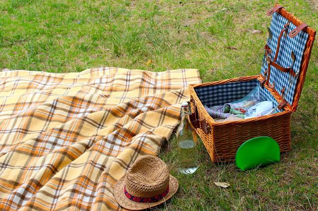 picnic by lake tomarata new zealand