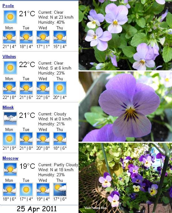 ...ну вот и к вам пришла весна