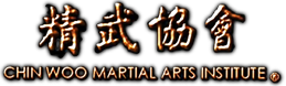 Wing Chun em Recife e Tai Chi: Chin Woo Martial Arts Institute: