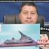 Johor Perhilitan director arrested for stealing ancient rhino horn