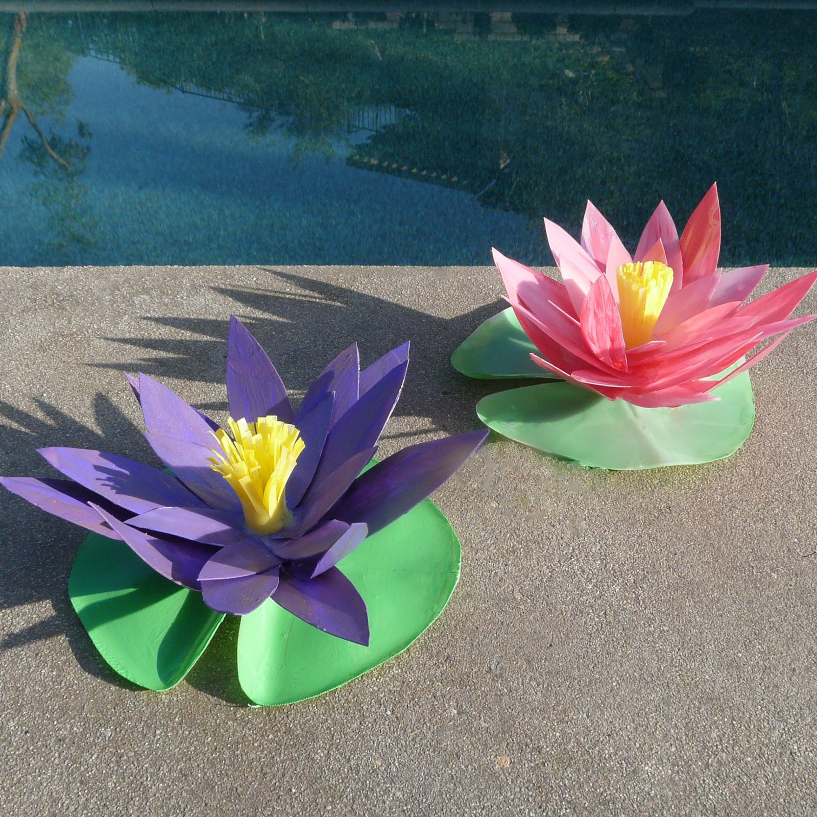 Make water lilies dhlflorist Images