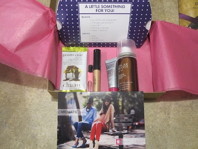 Subscription Boxes! November Ispy Glam Bag vs Birchbox