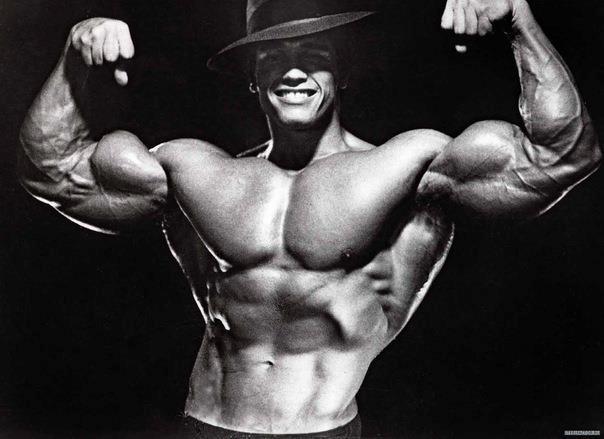 Most Muscular Men: Arn...