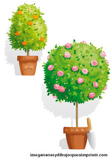 Pictures of flowerpots to print