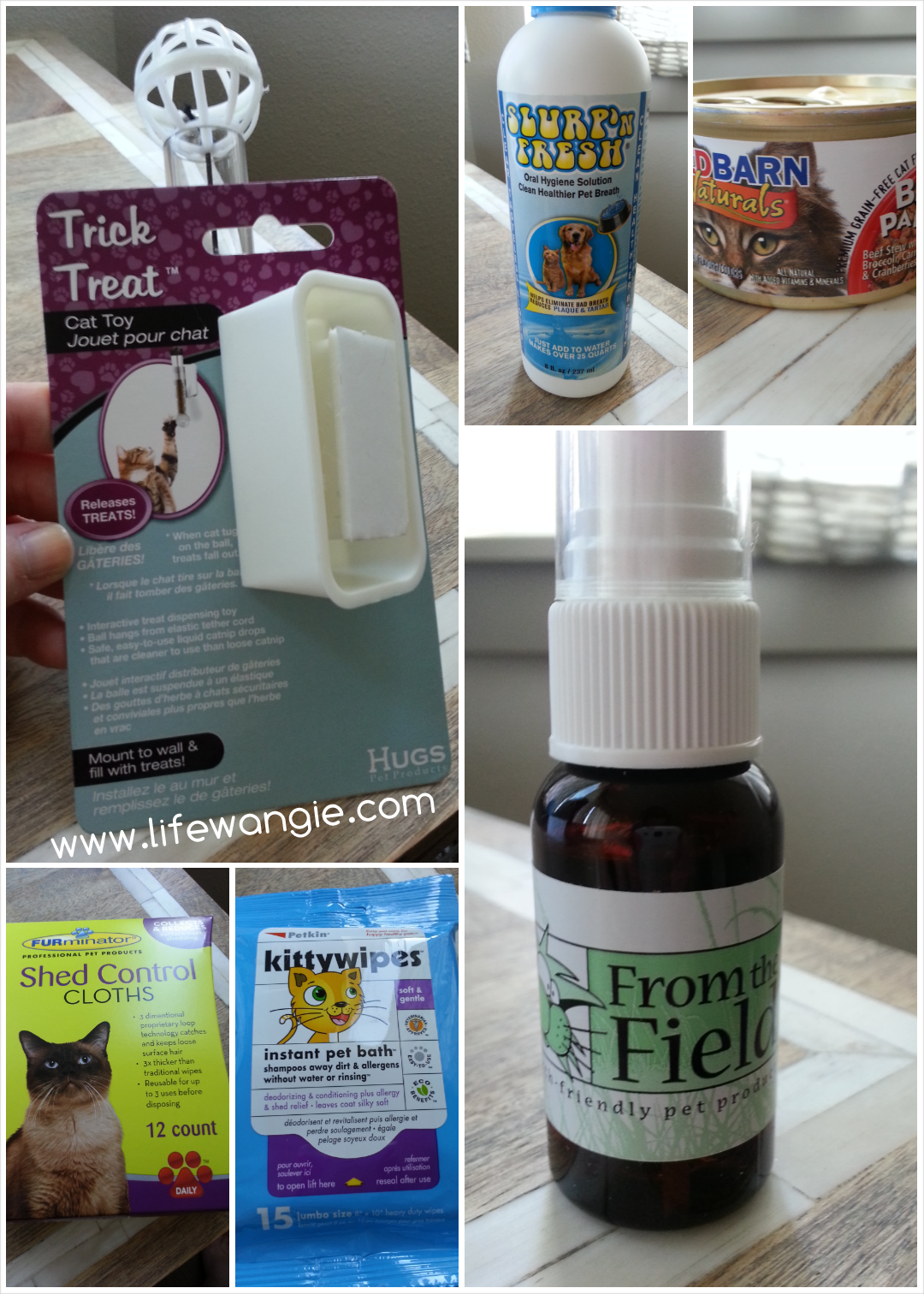 Contents of PetBox for Cats