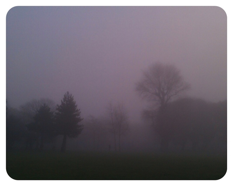 Homefield Park in fog