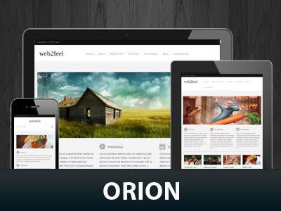 Orion Wordpress Theme