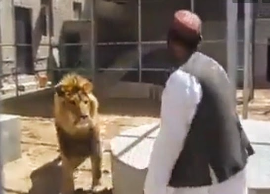 http://funchoice.org/video-collection/afghan-man-vs-lion