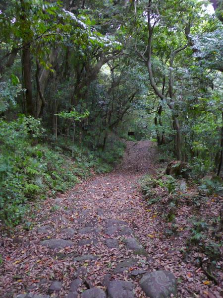 19_Old Prigrim's Path