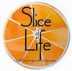 Slice of Life: Two Writing Teachers