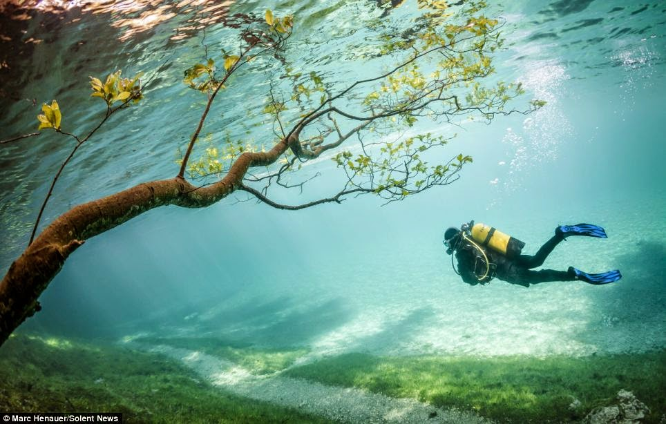 THE MAGIC OF DIVING THROUGH A SUBMERGED CITY PARK