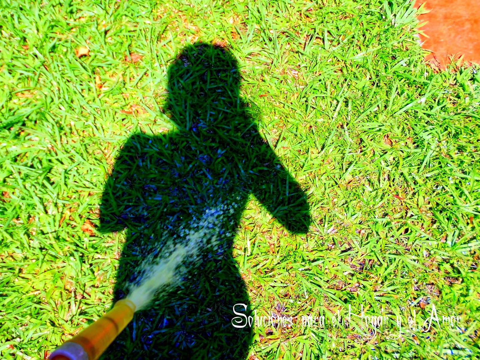 Mi sombra, grama, regar la grama