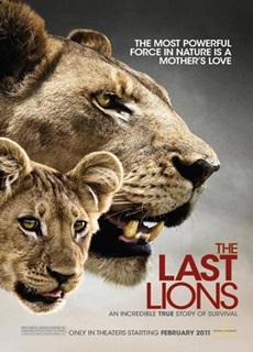 ντοκιμαντέρ με ζώα national geographic