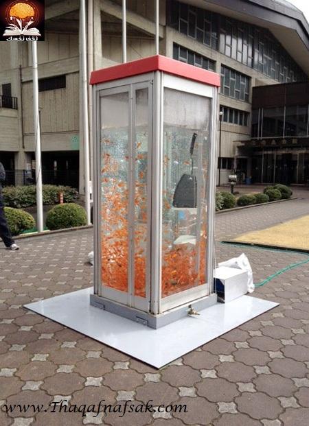 aquariumbooth09 أسماك في كابينة الهاتف