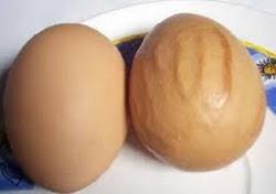 Telur kalimah ALLAH