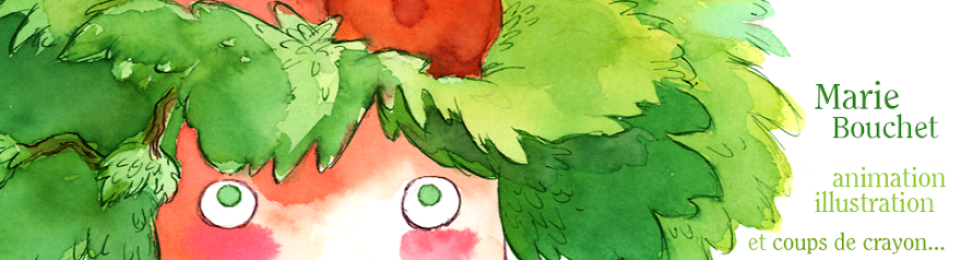 Le carton à plumes - Marie Bouchet
