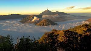 www.belantaraindonesia.org