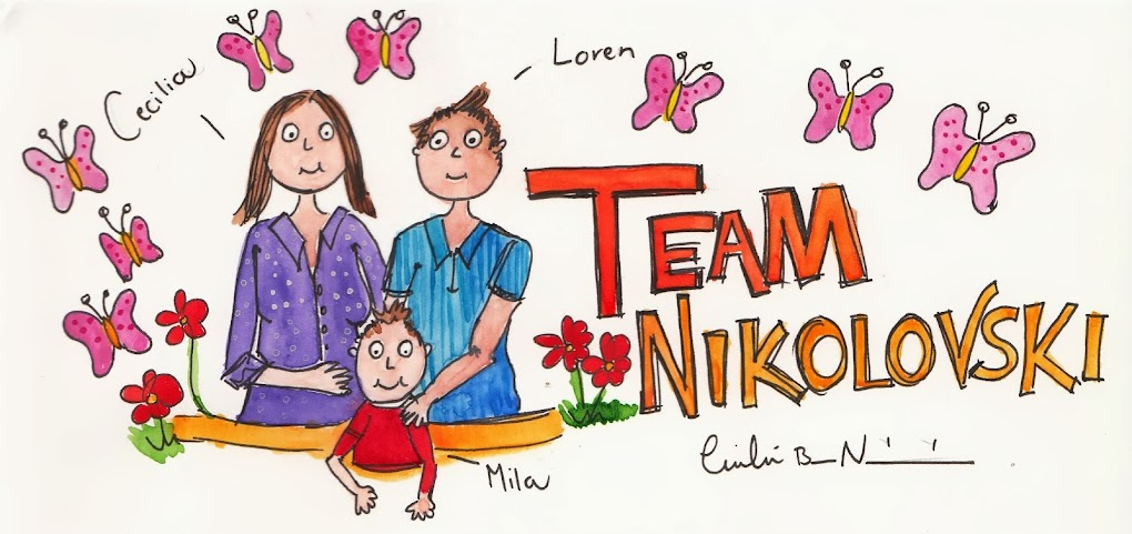 Team Nikolovski's Comic Adventures