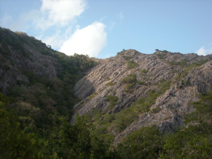 Discover Sri Lanka- Jathika Namal Uyana