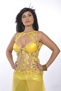Aiysha Sagar Hot Sexy Cleavage Stills