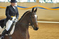 Is Your Career the Right Kind of Equestrian Event?