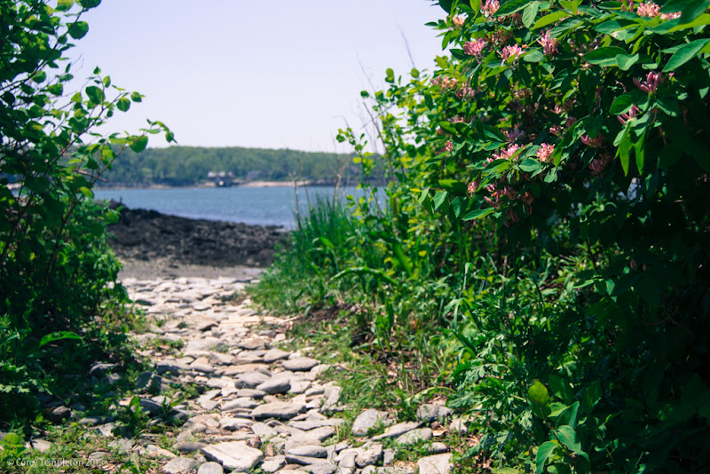 Peaks Island. Portland, Maine. Summer 2013. Photo by Corey Templeton.