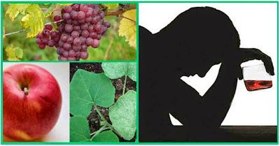 Remedios caseros y medicina natural para el alcoholismo