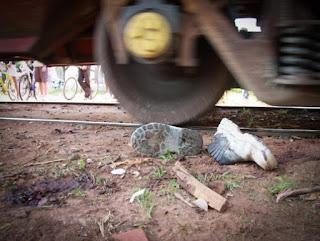 A Companhia Paulista de Trens Metropolitanos (CPTM) foi condenada pela 31ª Câmara de Direito Privado do Tribunal de Justiça de São Paulo a pagar indenização para a família de um menino que morreu atropelado por um trem.