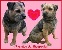 My Barnie...