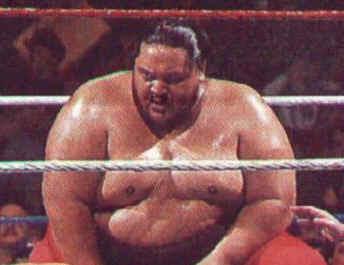 John Cena  OfficialWWE Wiki  FANDOM powered by Wikia