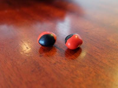 Ormosia coccinea Beans