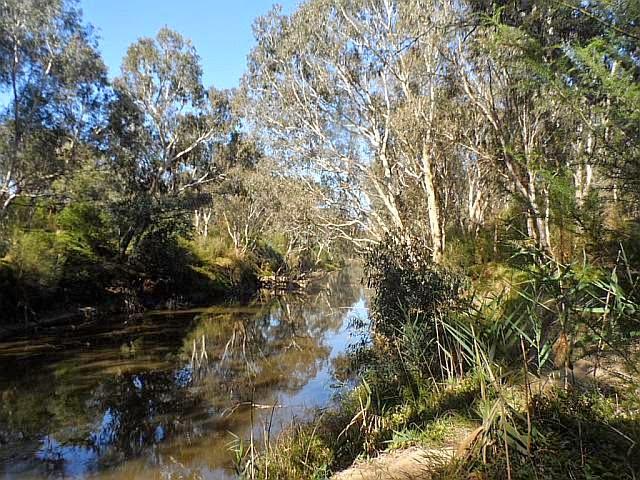 Yarra River at Burrarong Park, Templestowe