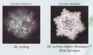 Hexagon™ Mist Sprayer