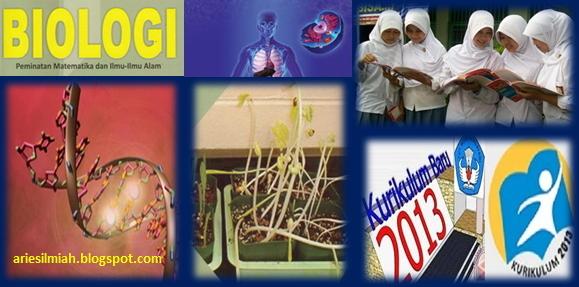 Js Aries Blog Perangkat Pembelajaran Biologi Mia Sma Kurikulum 2013