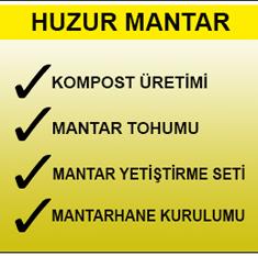 HUZUR MANTARCILIK