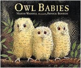 http://www.amazon.com/Owl-Babies-Martin-Waddell/dp/1564029654/ref=sr_1_1?s=books&ie=UTF8&qid=1389988633&sr=1-1&keywords=owl+babies