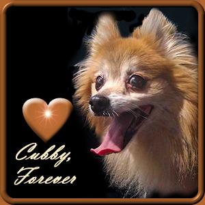 Cubby  RIP