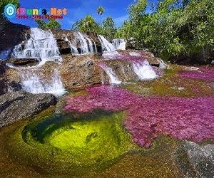Sungai Cano Cristales
