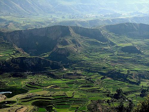 Discovery peru arequipa ca on del colca for Pisos en montornes del valles