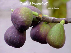 Nada é Impossível (Santa Rita de Cássia