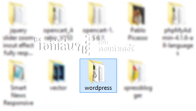 Wordpress folder