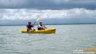 guadeloupe, mangrove, kayak,