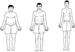 test de morphologie homme